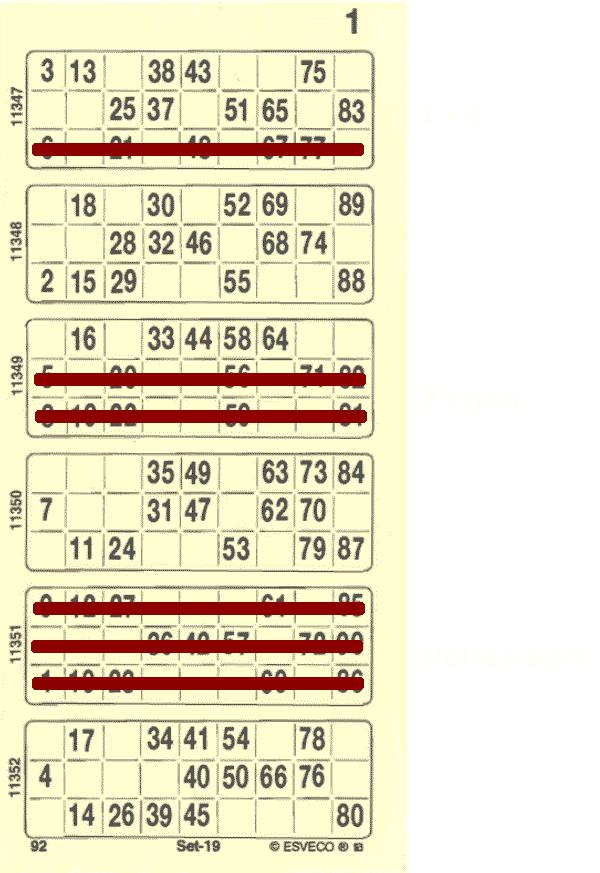 Bingokaart Voorbeeld