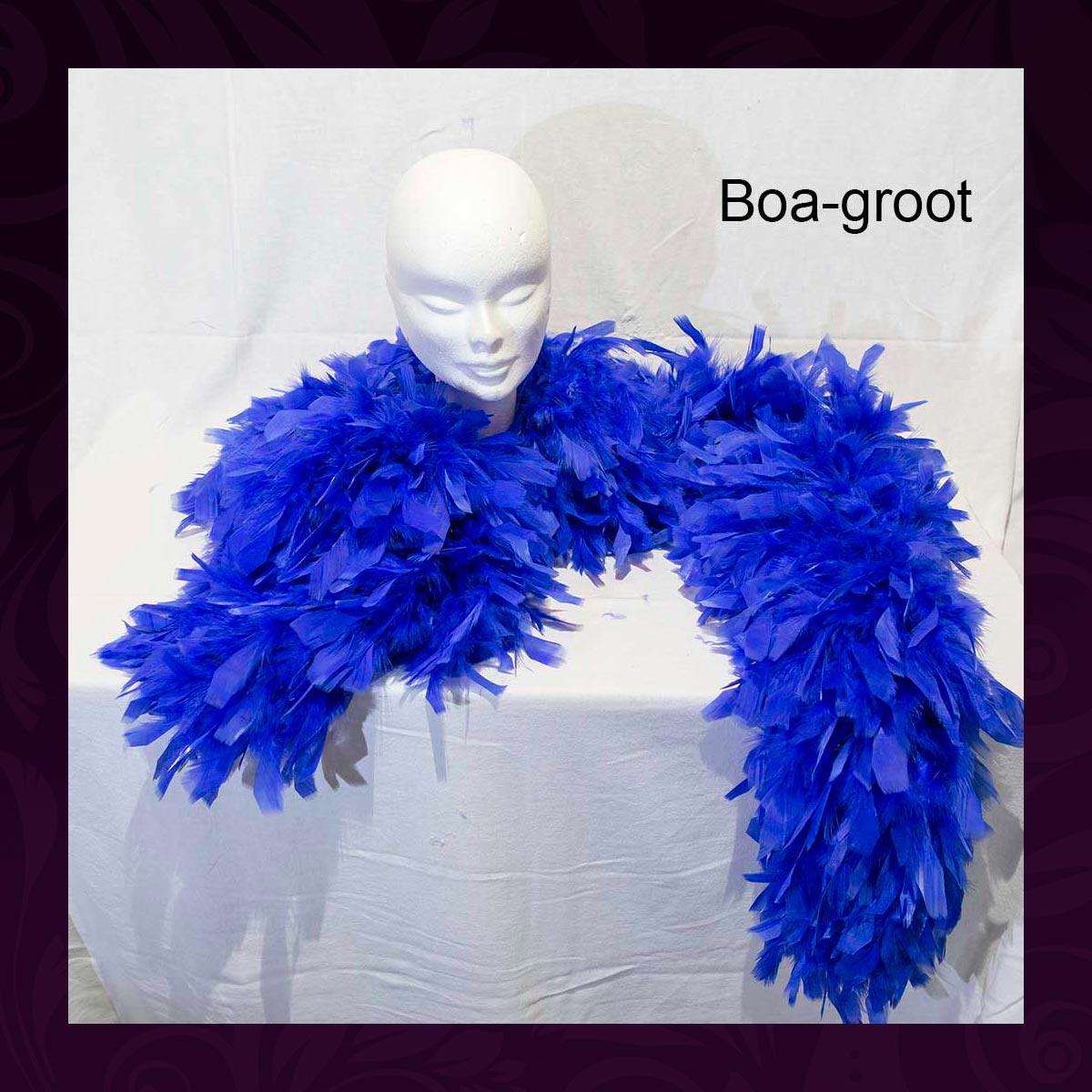 A005-Boa-groot-(MvT)