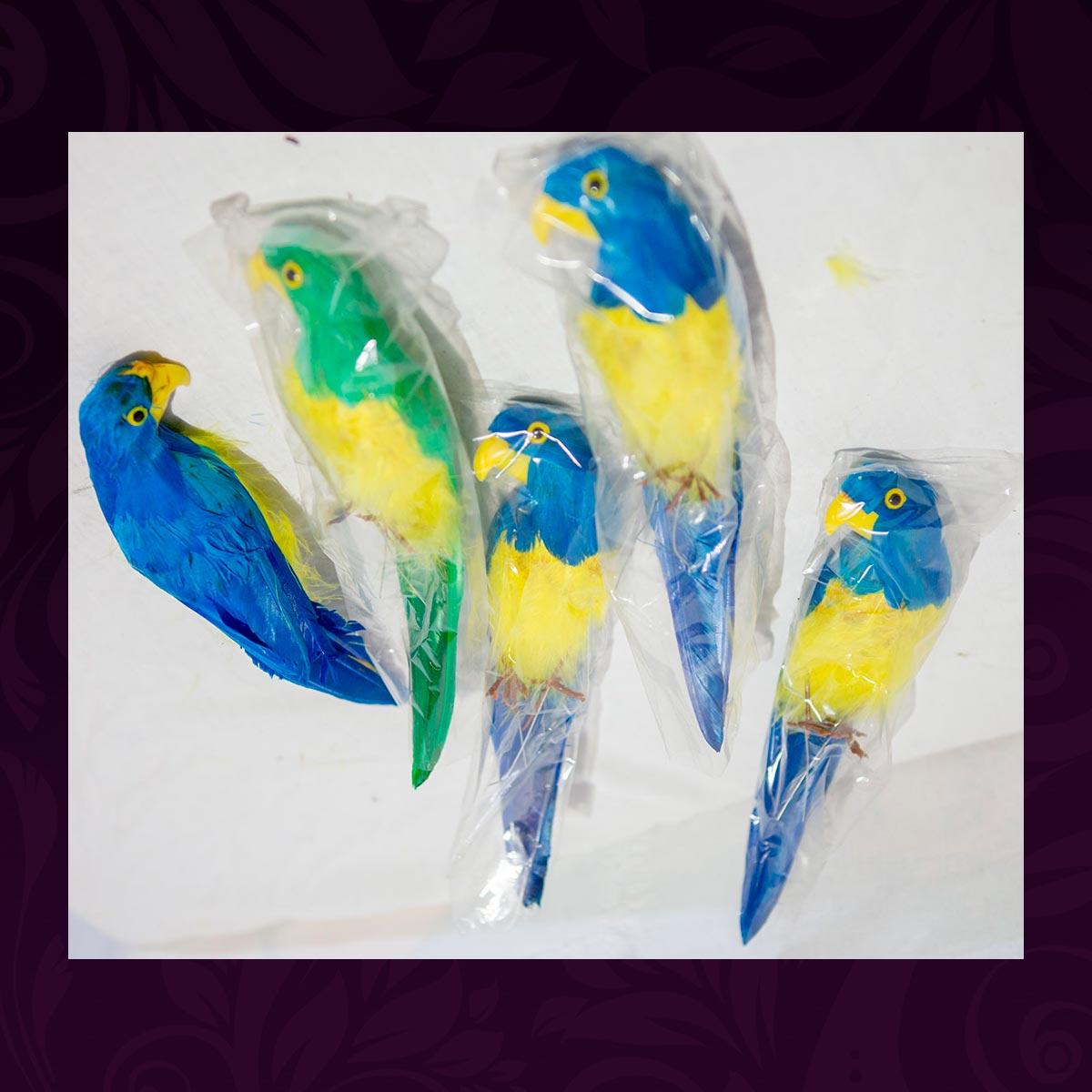 A015-Papagaaien-(MvT)